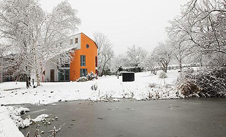 Weihnachtslieder Für Erwachsene.Alanus Werkhaus Oh Tannenbaum Weihnachtslieder Für Erwachsene Und